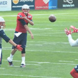 Five Things the Patriots OTAs Should Feature